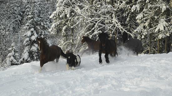 Hold treningsmotivasjonen oppe i vinter!